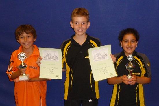 Starker Auftritt beim Ortenauer Jugend-Tischtennisturnier